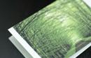 【滋賀/大津・膳所】エステティックサロン SOPHIA(ソフィア)のメンバーズカード